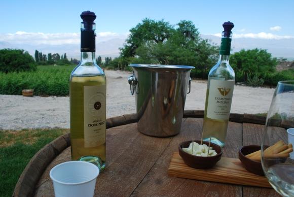 White wines at Domingo Molina