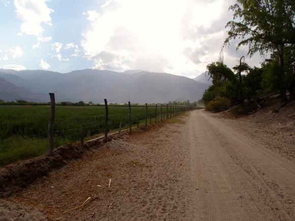 Road to Cabras de Cafayate