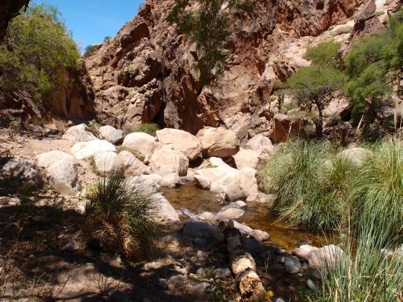 Rio Colorado Cafayate hike