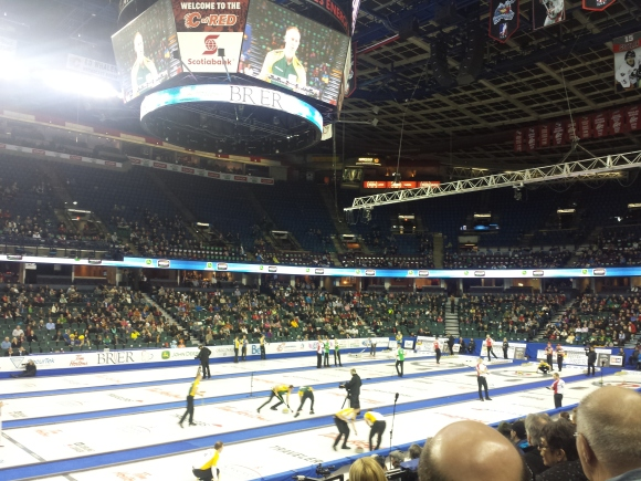 Brier ice sheets