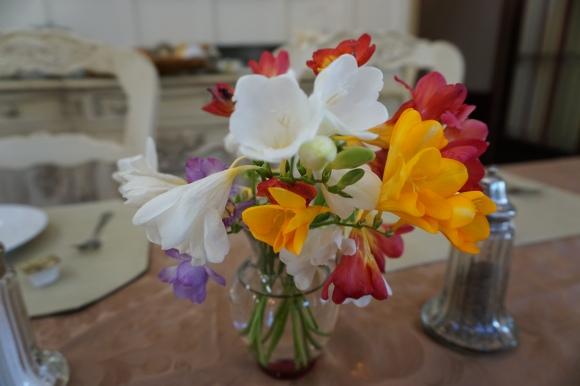 Churchill Manor flowers
